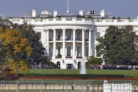 Rent a camaro in Washington DC